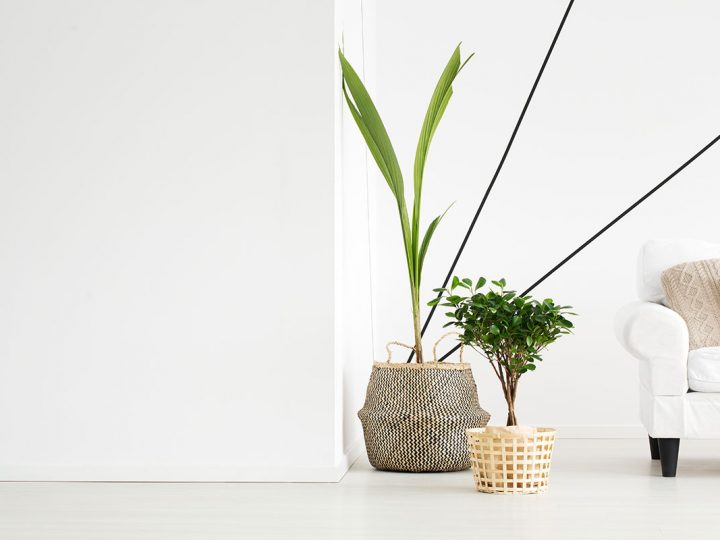 'FENG SHUI TIPS TO ENHANCE THE 'GOOD ENERGY' IN YOUR HOME  Copy